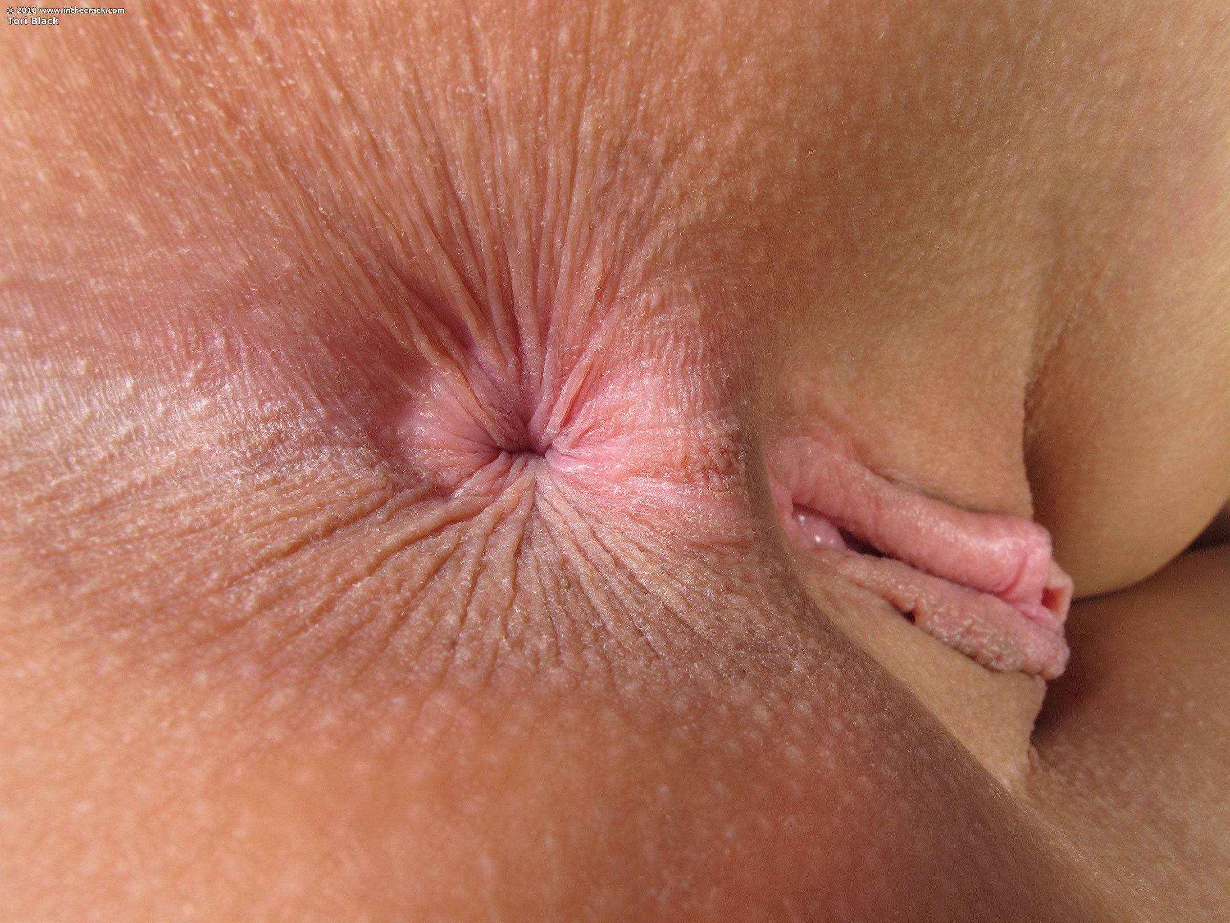 best of Close ups Anus