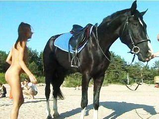 Pferd bdsm Erotische Hypnose: